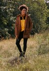 The North Face - INSULATED ARCTIC MOUNTAIN JACKET - Short coat - chipmunk brown