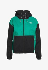 The North Face - WOMENS FARSIDE JACKET - Hardshell jacket - jaiden green - 4