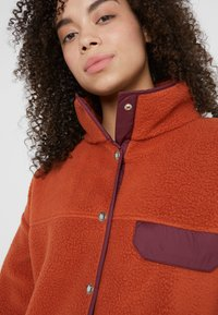 The North Face - CRAGMONT JACKET - Fleece jacket - picante red/deep garnet red - 3
