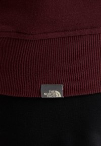 The North Face - MENS DREW PEAK HOODIE - Hoodie - deep garnet red - 5