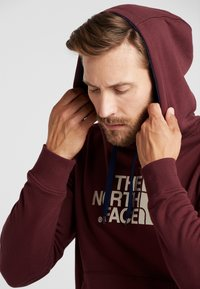 The North Face - MENS DREW PEAK HOODIE - Hoodie - deep garnet red - 3