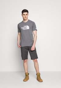 The North Face - MENS WICKER GRAPHIC CREW - T-shirt con stampa - medium grey heather/white