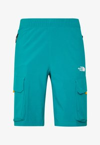 The North Face - MEN'S VARUNA CARGO SHORT - Outdoor shorts - fanfare green - 3
