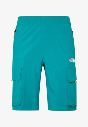 MEN'S VARUNA CARGO SHORT - Szorty trekkingowe - fanfare green