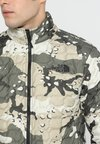 The North Face - Outdoorjacke - beige