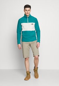 The North Face - MENS BLOCKED ZIP - Fleecová mikina - green/vintage white - 1