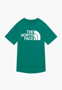 The North Face - BOY'S REAXION 2.0 TEE - Print T-shirt - fanfare green heather - 0