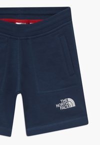 The North Face - YOUTH - Short de sport - blue wing teal - 3