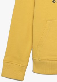 The North Face - DREW PEAK - Mikina s kapucí - yellow - 2