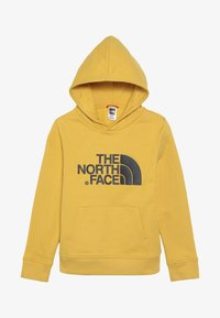 The North Face - DREW PEAK - Mikina s kapucí - yellow - 3