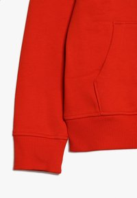 The North Face - DREW PEAK - Mikina skapucí - fiery red/white - 2