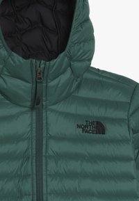 The North Face - ACONCAGUA - Down jacket - night green - 4