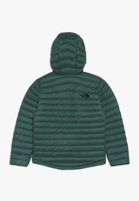 The North Face - ACONCAGUA - Down jacket - night green - 1