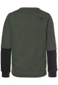 The North Face - YOUTH DREW PEAK LIGHT CREW - Bluza - thyme - 1