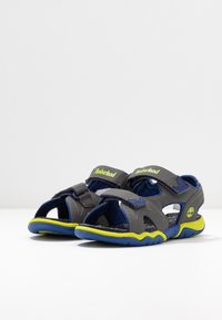 Timberland - ADVENTURE SEEKER 2 STRAP - Walking sandals - dark grey - 3