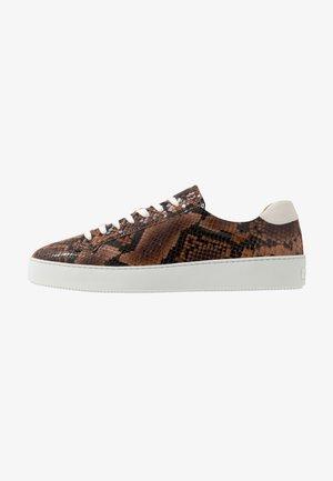 SALAS - Sneaker low - dark brown