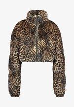 XANDER JACKET - Winter jacket - brown