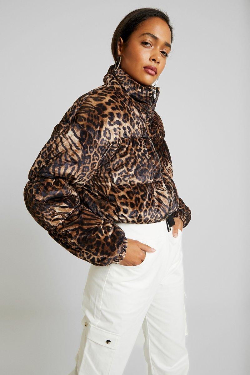 Tiger Mist - XANDER JACKET - Veste d'hiver - brown