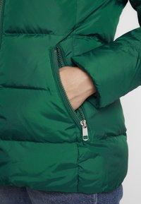 Tommy Hilfiger - NANI - Chaqueta de plumas - green - 5
