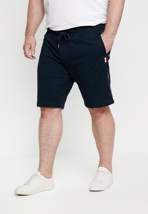 GLOBAL STRIPED - Pantalones deportivos - blue