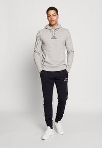 Tommy Hilfiger - BASIC EMBROIDERED HOODY - Hoodie - grey - 1