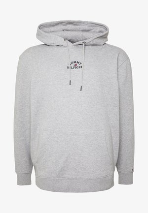 BASIC EMBROIDERED HOODY - Hoodie - grey