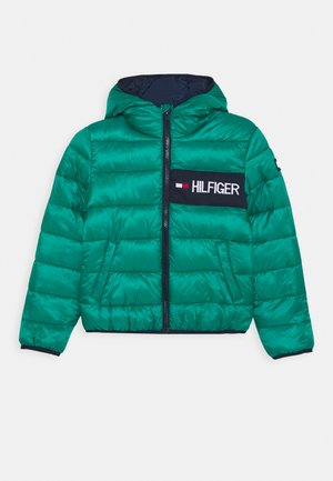 ESSENTIAL PADDED JACKET - Zimní bunda - green