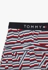 Tommy Hilfiger - TRUNK 2 PACK - Panties - multi