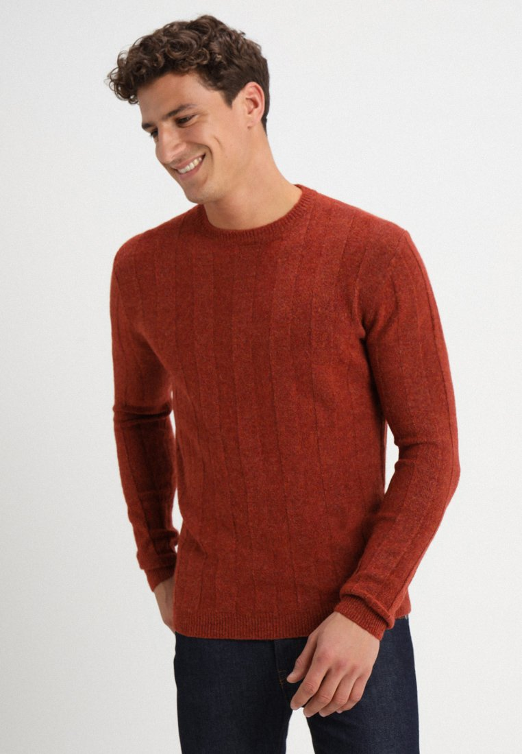 TOM TAILOR DENIM - VERTICAL STRUCTURE  - Jumper - velvet red