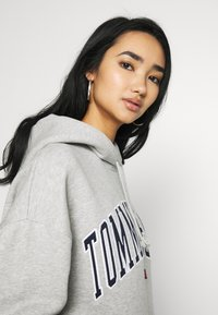 Tommy Jeans - CLASSICS LOGO HOODIE - Huppari - grey - 3