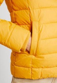 Tommy Jeans - ESSENTIAL HOODED JACKET - Winter jacket - golden glow - 7