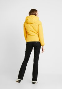 Tommy Jeans - HOODED JACKET - Chaqueta de plumas - golden glow - 3