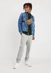 Tommy Jeans - CLASSICS - Pantaloni sportivi - grey - 1