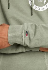 Tommy Jeans - GRAPHIC WASHED  - Mikina skapucí - green - 5