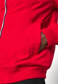 Tommy Jeans - ESSENTIAL PADDED JACKET - Jas - deep crimson - 5