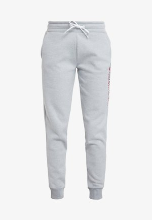 BIG LOGO - Teplákové kalhoty - grey