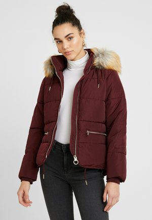 JACK HOOD PUFFER - Zimní bunda - burgundy