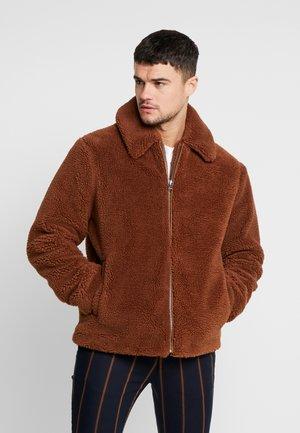 RUST SHORT TEDDY - Zimní bunda - brown