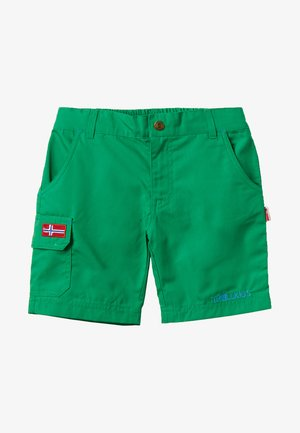 SANDEFJORD  - Outdoor shorts - india green