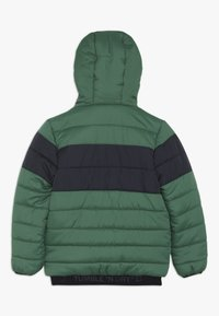 Tumble 'n dry - VADDON - Winterjas - true green - 1