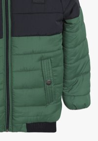 Tumble 'n dry - VADDON - Winterjas - true green - 3