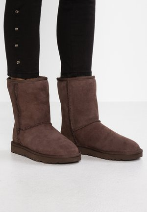 CLASSIC SHORT - Bottines - chocolate