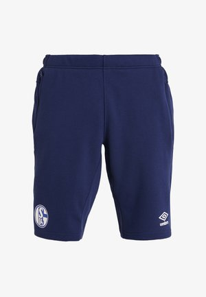 FC SCHALKE 04 PRO  - Korte broeken - medieval blue/evening blue