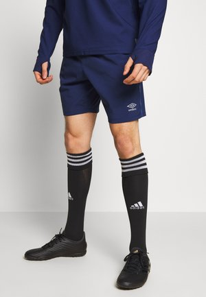 TRAINING SHORT - Korte broeken - medieval blue