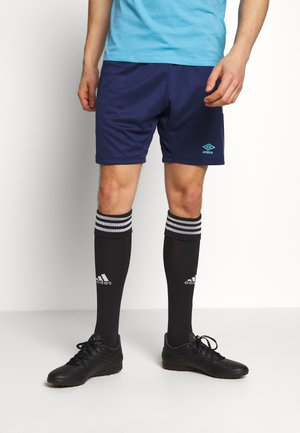 GRAPHIC SHORT - Sports shorts - medieval blue
