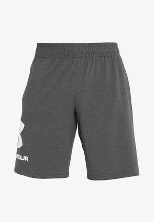 SPORTSTYLE COTTON LOGO SHORTS - Pantalón corto de deporte - charcoal medium heather/white
