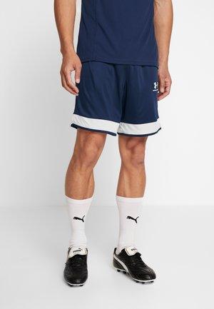 CHALLENGER SHORT - Sports shorts - academy/halo gray