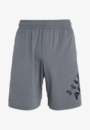 SPORTSTYLE WORDMARK LOGO - Sports shorts - pitch gray/black