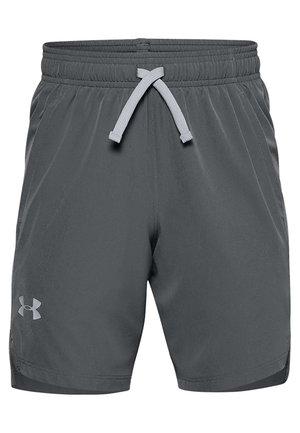 Shorts - pitch gray
