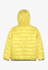 Vingino - TOINE - Zimní bunda - honey - 1